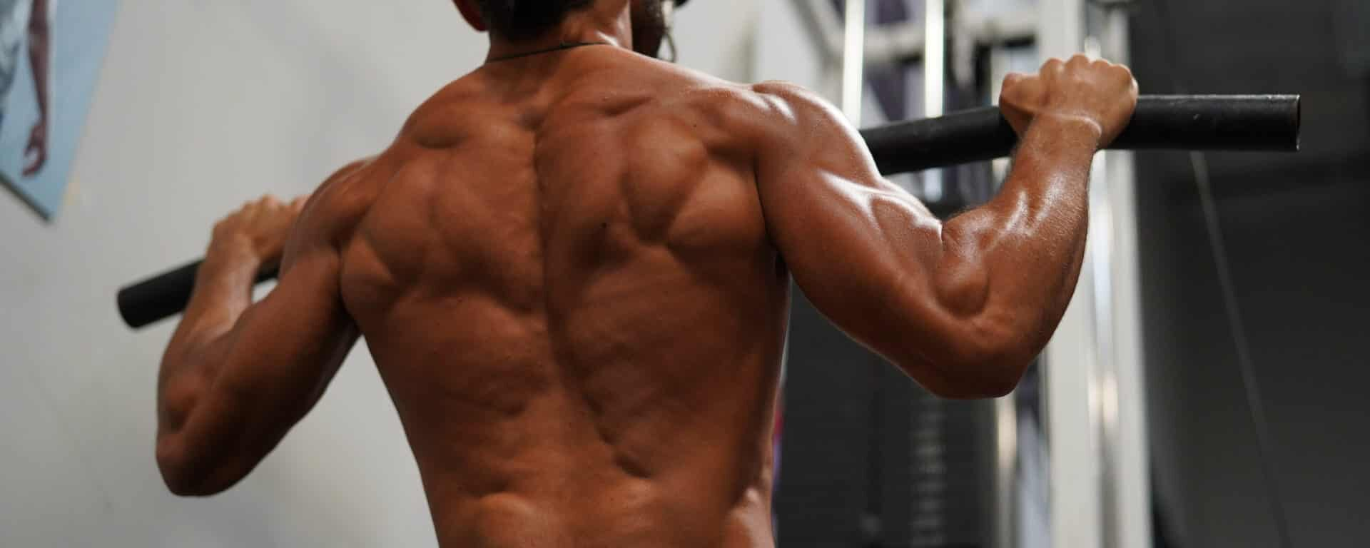The Posterior Chain and Why It's Important to Build Your Whole Backside